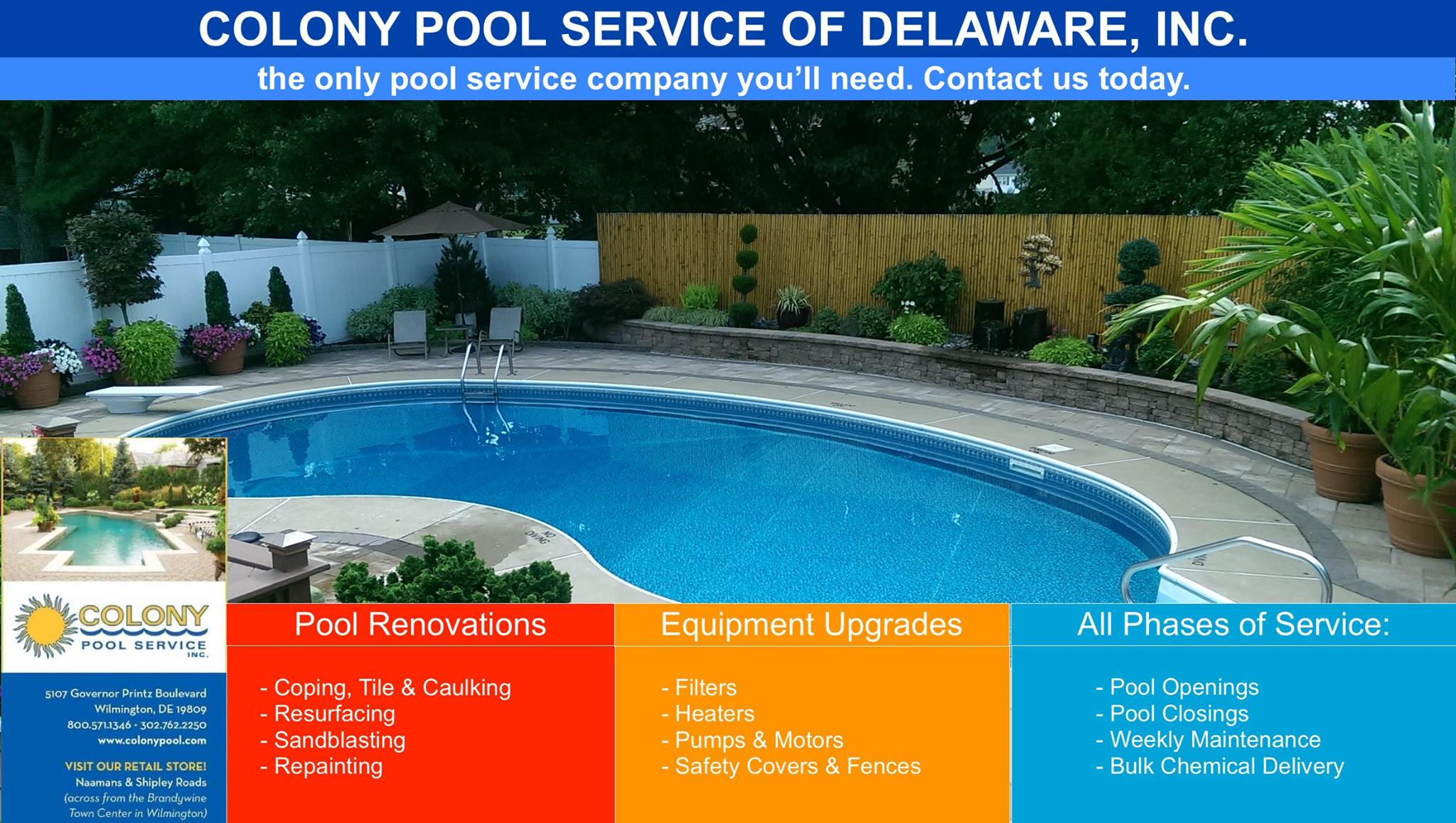 All Phases of Swimming Pool Services